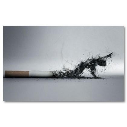 Αφίσα (κάπνισμα, τσιγάρα, μαύρο, λευκό, άσπρο)
